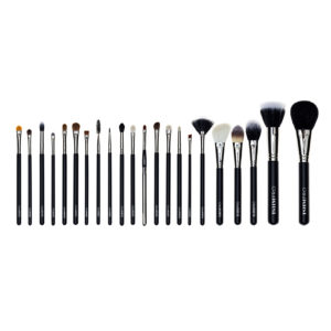 The Full Professional Brush Set (22)